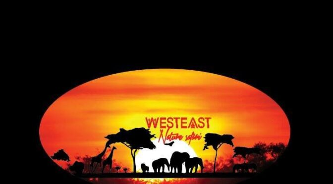 WestEast Nature Safari, travel company